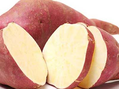 potato export from pakistan